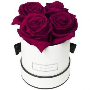 rosen_box_infinity_small_latin_cherry_wei__rund_3