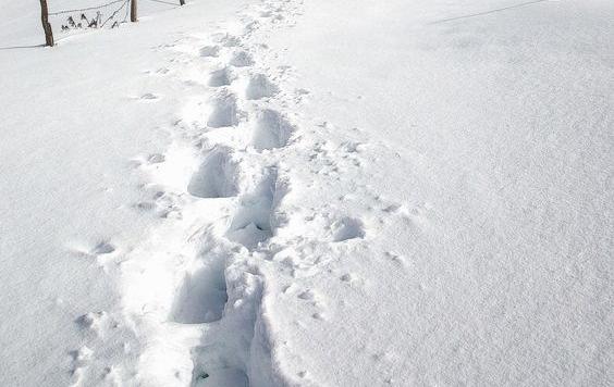 De leukste snowboots van ditmoment